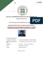 INFRAESTRUCTURA DE TRANSPORTE Y COMERCIO UN ANÁLISIS COMPARATIVO ENTRE ECUADOR Y PAÍSES  DE ASIA – PACÍFICO.docx