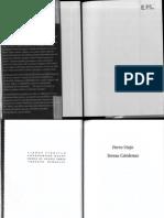 Perro Viejo_Teresa Cardenas.pdf