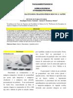 Relatorio.sintese Do Paracetamol.okkk