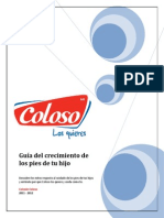CLS_PDF