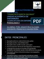 Fisiopatologia Gpo a 2013 (1)