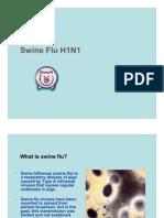 Swine Flu Presentation -- Do's & Dont's for H1N1 Viral Attack