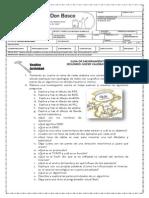 CDB_guia-MEJORA-9-INFOR-12.pdf