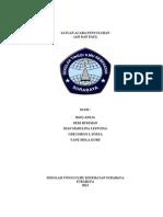 SAP ASI+PASI.doc