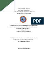 Tesis.ANÁLISIS ESTÁTICO DE FLEXIBILIDAD