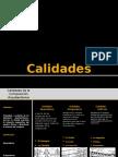 02 Composicic3b3n II Calidades Generadoras 2012 2 Final