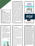 TRÍPTICO REPRESENTANTES DE LA TRIGONOMETRÍA.pdf