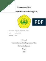 Tanaman Obat Rosella (Hibiscus sabdariffa L).docx