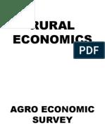 RURAL ECONOMICS.pptx