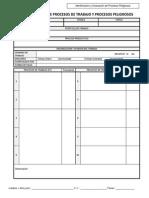 Formato IPP Encuesta Colectiva APESSLA