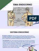 Sistema Endocrino.ppt