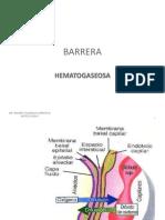 barreramac-101016000304-phpapp02