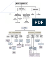 Algoritma untuk evaluasi tes fungsi hati abnormal.docx