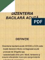 Dizenteria bacilara