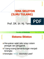 SISTEMA SKLETON - Blok 6.ppt