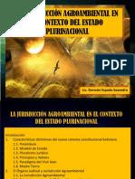 La JA en El Estado Plurinacional (1)
