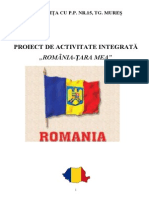 Proiect de activitate.doc
