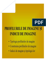 Prelegerea 3. Profilurile de Imagine