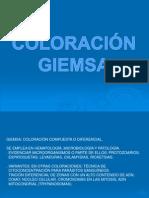 COLORACIÓN GIEMSA Y W-S.