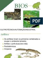 Anf-bios ELE 1A_2