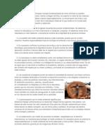 10 mandamientos ecologicos.docx
