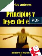 Principios y Leyes Del Exito
