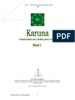 Manual Karuna Reiki