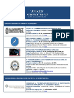 APECES - Newsletter N 13. 11-16.11.2013