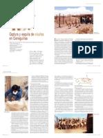 Notacaptura-CIENCIAHOY.pdf