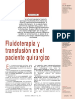 Original Fluidoterapia