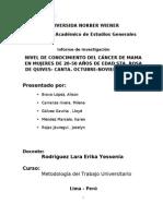 Modelo de Informe de Investigacion -MTU 2
