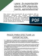Consulta para  la exportación de un producto APA.pptx