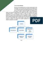 Opciones Para La Estructura de Responsabilidades