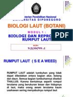 Modul 1 Biologi Rumput Laut.ppt