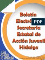 Boletin Noviembre.pdf