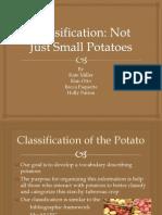 potato presentation master copy 10 31 final edits