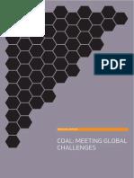 coal_meeting_global_challenges_report(03_06_2009).pdf