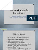 Transcripcion de Eucariotas.