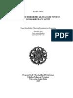 Review Paper-Optimasi Xilosa Dari Tandan Kosong Kelapa Sawit