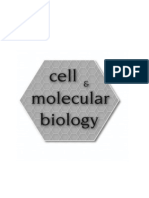 2011 Lab 1 Enzymology.pdf