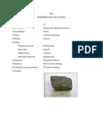 DETERMINASI BATUAN BEKU dan BATUAN sedimen.pdf
