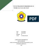 38673798-pembuatan-nata-de-coco-110510183339-phpapp01.pdf