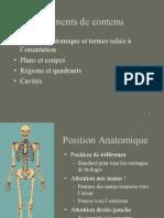 Planuri anatomice.ppt