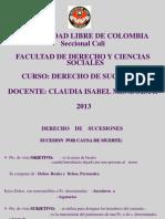 Curso - Sucesiones- 2013