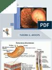Cancer Gastrico MonsTruosa