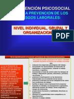 Intervencion Psicosocial PRL.pdf