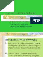 Energia in sistemele biologice