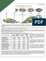 Ecological-Footprint.pdf