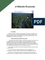Mediul Padurilor Ecuatoriale