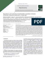 Majdi_2011_Phytochem.pdf